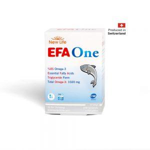 EFA-ONE1